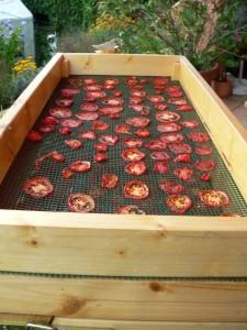 Tomate De Berao getrocknet